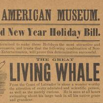 Advertisements - Barnum Museum